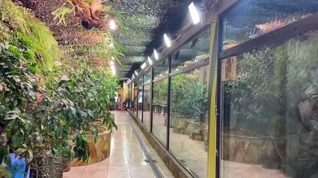 ВЛенинградском зоопарке заработала экспозиция«Тропический дом». Посетителей ждут экзотические растения итеплолюбивые животные