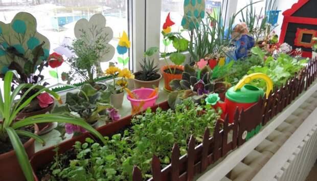 Зимнее выращивание овощей в теплице