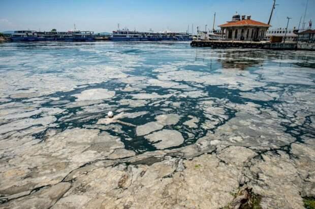Эрдоган пообещал спасти Мраморное море от слизи