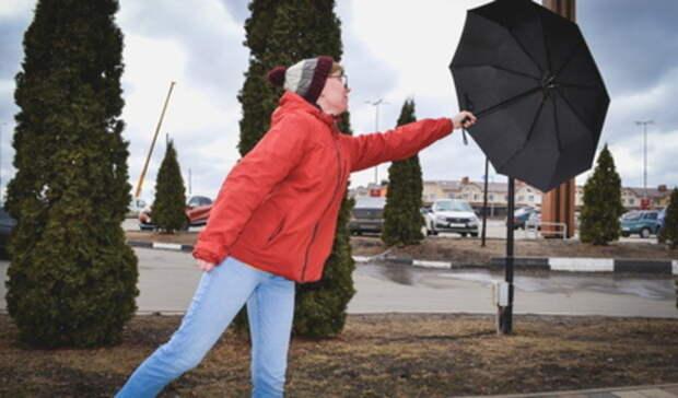 Штормовое предупреждение из-за ветра объявлено в Свердловской области
