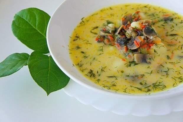 Грибной сливочный суп.