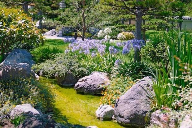 альпинарий, рокарий, клумба, цветы, сад