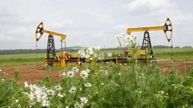 «Роснефть» вчисле лучших врамках Carbon Disclosure Project