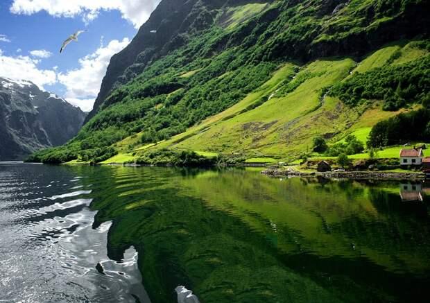 fjords01 Самые красивые фьорды Норвегии