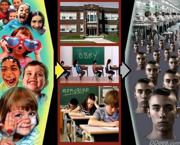 мировая закулиса, ребенок, тест, мышление, система, nasa