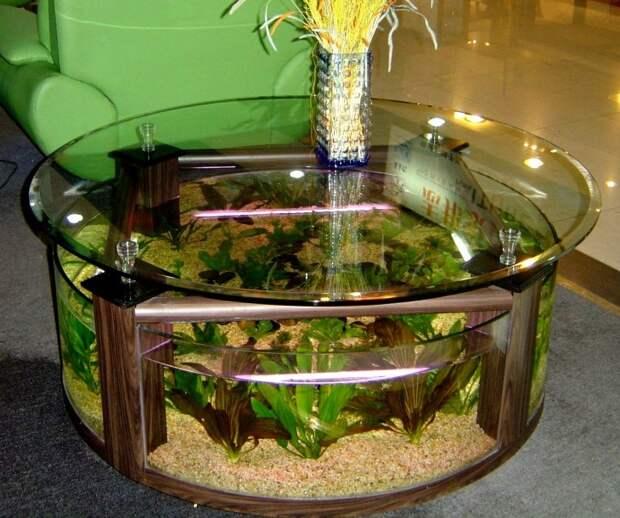 Имитация аквариума: мастер-классы