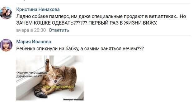 «Они же издеваются над животным!»: экс-участники «Дома-2» Саша Черно и Иосиф Оганесян надевают на кошку подгузник своего сына