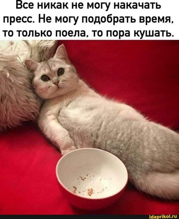 - Алло! Это ясновидящая Антонина? - Да, Сергей Иванович...