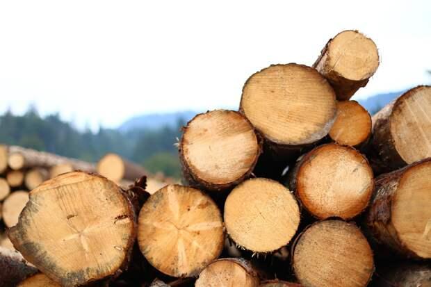 Цены производителей Удмуртии на продукцию из металла и древесины с начала года выросли в 1,5 раза