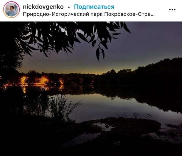 Фото дня: преображение парка «Покровское-Стрешнево» с наступлением ночи