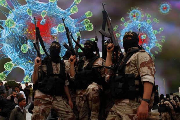 Живое биологическое оружие: Турция отправила в Ливию террористов с инфекцией коронавируса