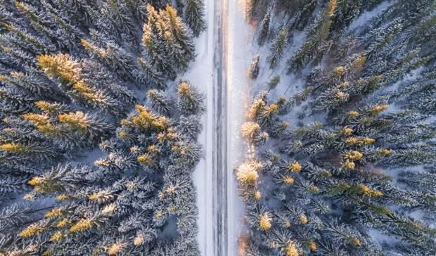 Синоптики спрогнозировали вРоссии холодную зиму