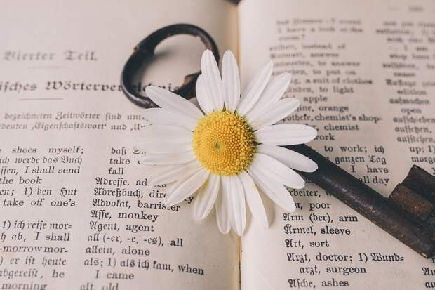 Ключ, Старый, Цветок, Ностальгический, Винтаж