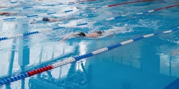 На соревнованиях в спортшколе в Северном определили самых быстрых юных пловцов