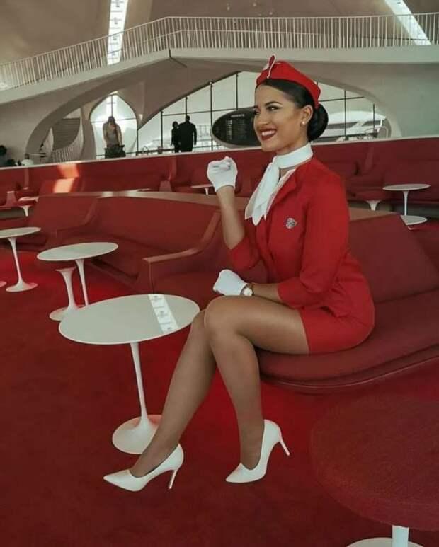Ножки стюардесс. Подборка chert-poberi-styuardessy-chert-poberi-styuardessy-15060427022021-12 картинка chert-poberi-styuardessy-15060427022021-12