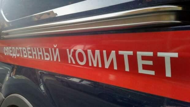 Бастрыкин потребовал от следователей доклад по делу о гибели девушки в Подмосковье