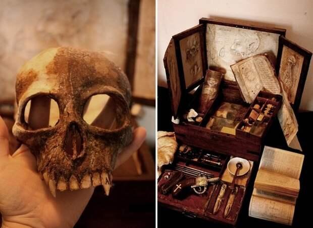 Коллекция таинственных криптидов Томаса Мерлина