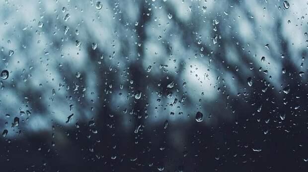 Тёплый фронт принесёт в Петербург дожди