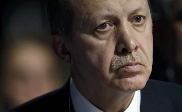 Турецкие псы молят о пощаде. Путин вытирает ноги об экономику Турции
