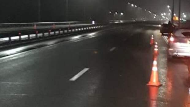 Стоматолог насмерть сбил пешехода в Ленобласти