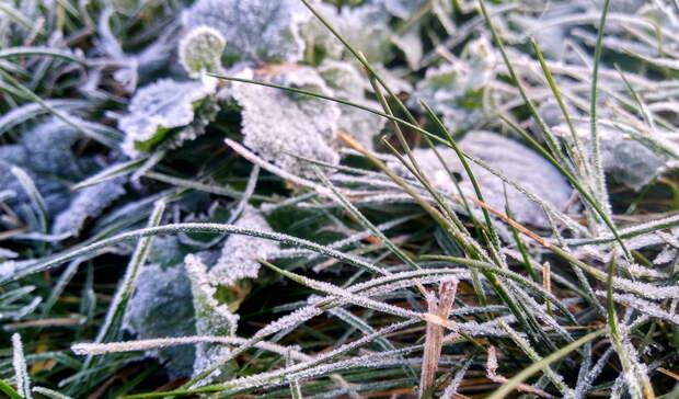 Погода в Башкирии обещает быть прохладной, но сухой