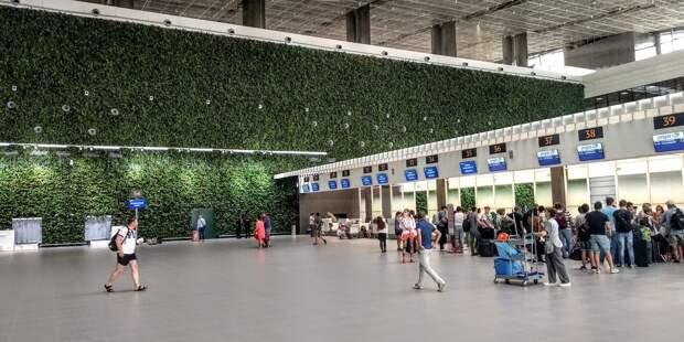 В аэропортах РФ предлагают открыть аптеки в «чистых» зонах