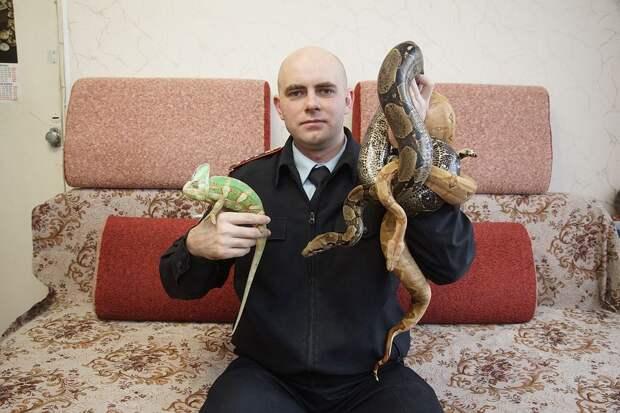 Дома у Андрея Князева самый настоящий зоопарк