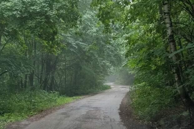 Дорога на вершину горы