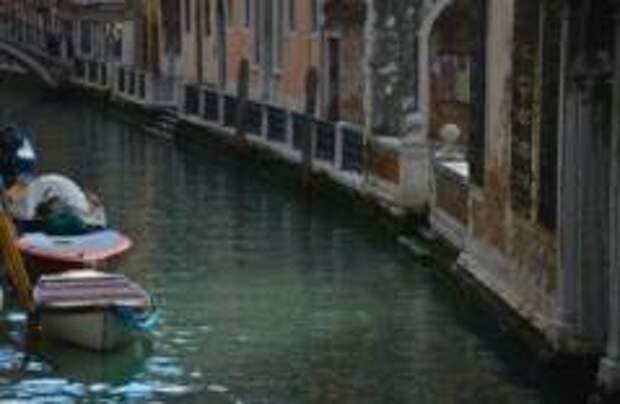 Вода в каналах Венеции стала чище из-за карантина