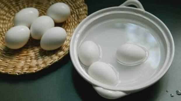 Зачем нужна вода, в которой варились яйца, и почему полезно поливать ею комнатные растения