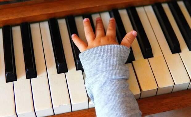 Звук пианино будил женщину по ночам, а когда она увидела маэстро — не поверила своим глазам