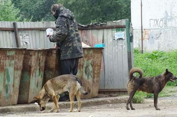В РФ уточнят понятие «гражданин без определенного места жительства»