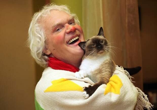 Дар предвидения: кошки спасают человека животные, коты, факты