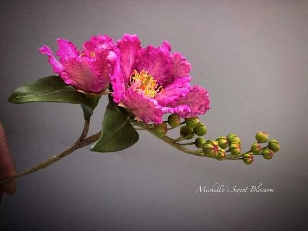 Сахарные цветы от Мишель Нгуен