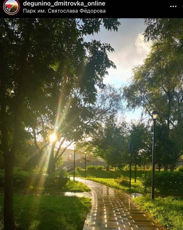 Фото дня: солнечный парк имени Федорова