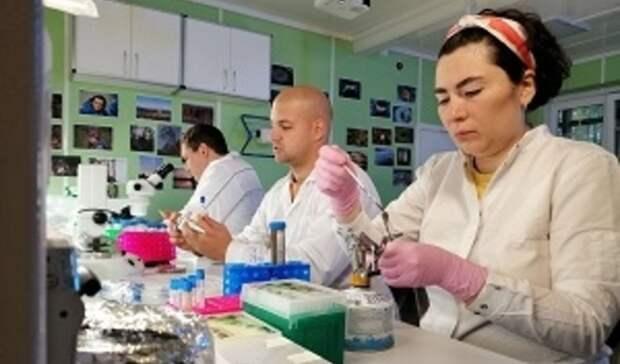 «Роснефть» начала испытания микроорганизмов против нефтезагрязнений