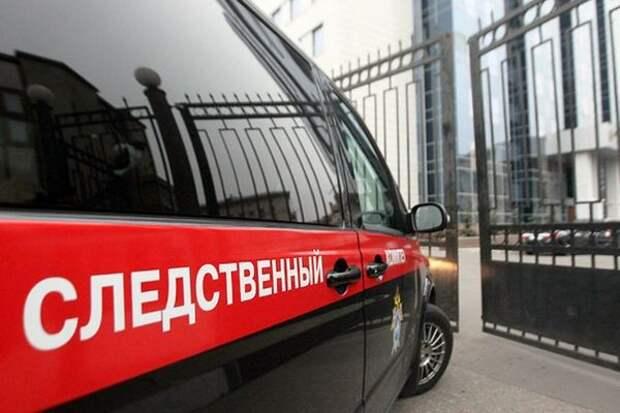 Двух мигрантов задержали по подозрению в убийстве пенсионерки в Подмосковье