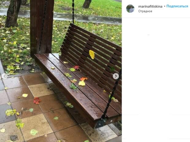 Фото дня: в Отрадном листья усыпали качели
