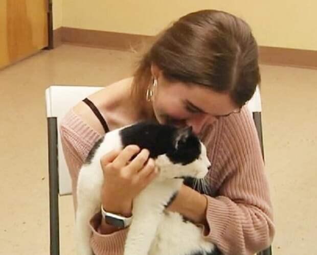 Потеряв кота несколько лет назад, волонтер случайно встретила его в приюте