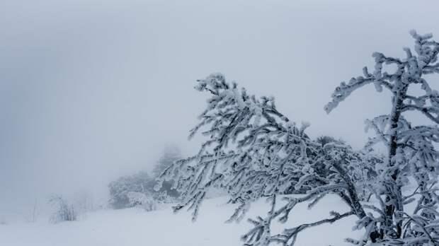 Снегопад и метель ожидаются в нескольких регионах России в ближайшие дни