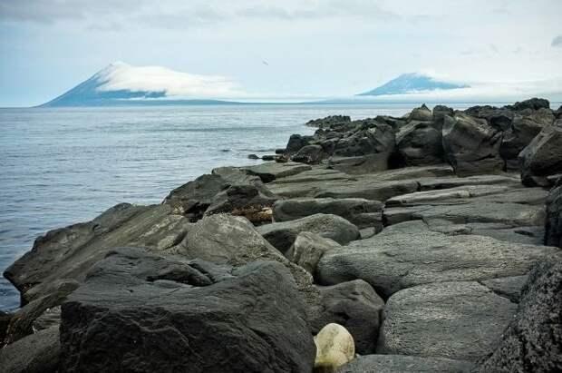 Рядом с Курильскими островами произошло землетрясение магнитудой 3,7