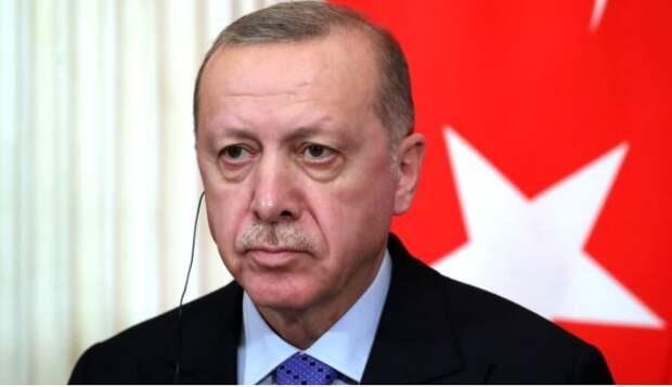 Пушков оценил слова Эрдогана о Крыме