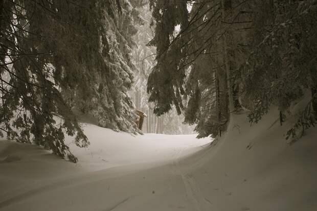 29 января в Удмуртии ожидается до -17 градусов