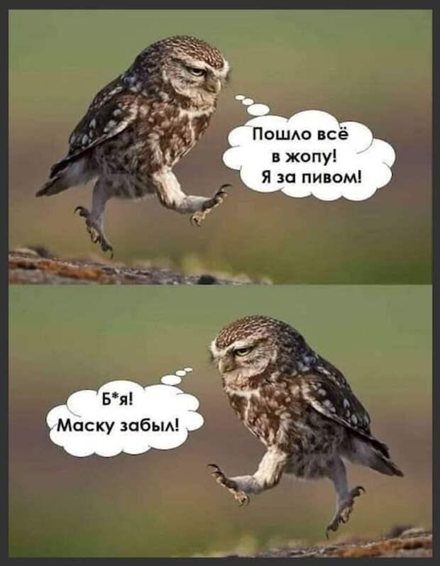 Девушка спрашивает подругу:  - Почему ты такая грустная?...