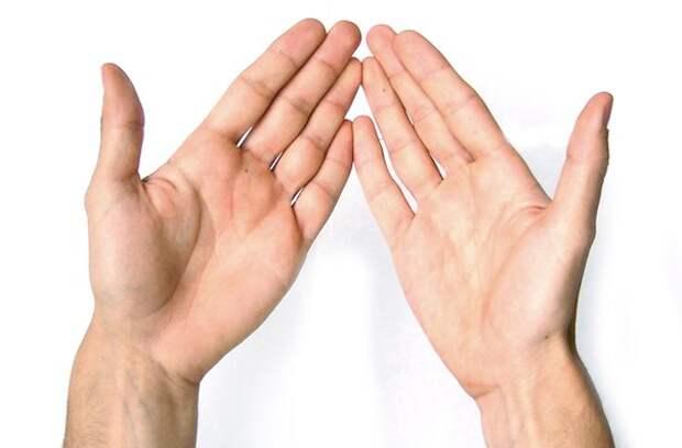 Как определить болезни человека по его рукам, изображение №1