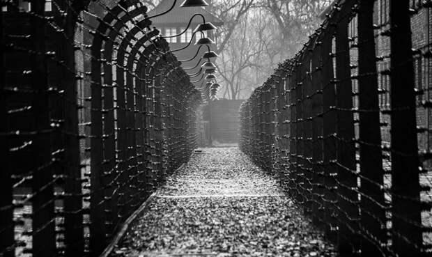 Концлагерь Освенцим. Иллюстрация