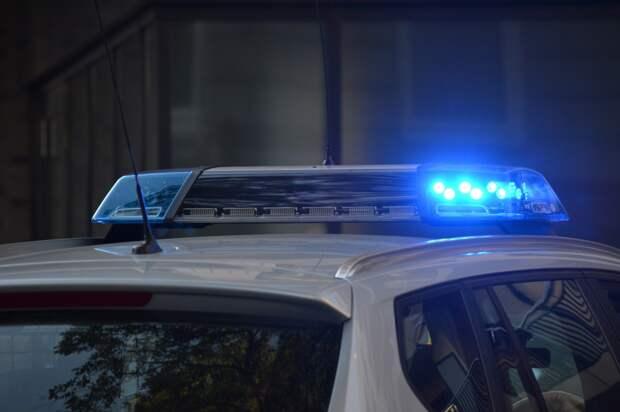 Полицейские севера Москвы задержали подозреваемую в краже