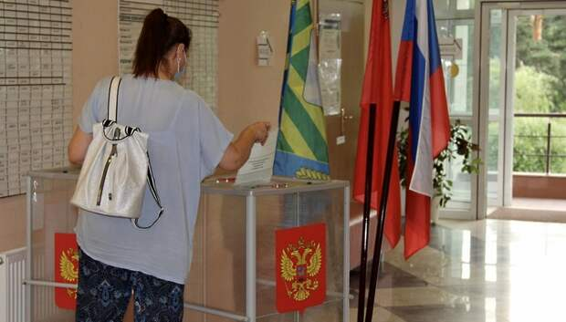 Явка в первый день голосования по Конституции в Подмосковье составила 7,67%