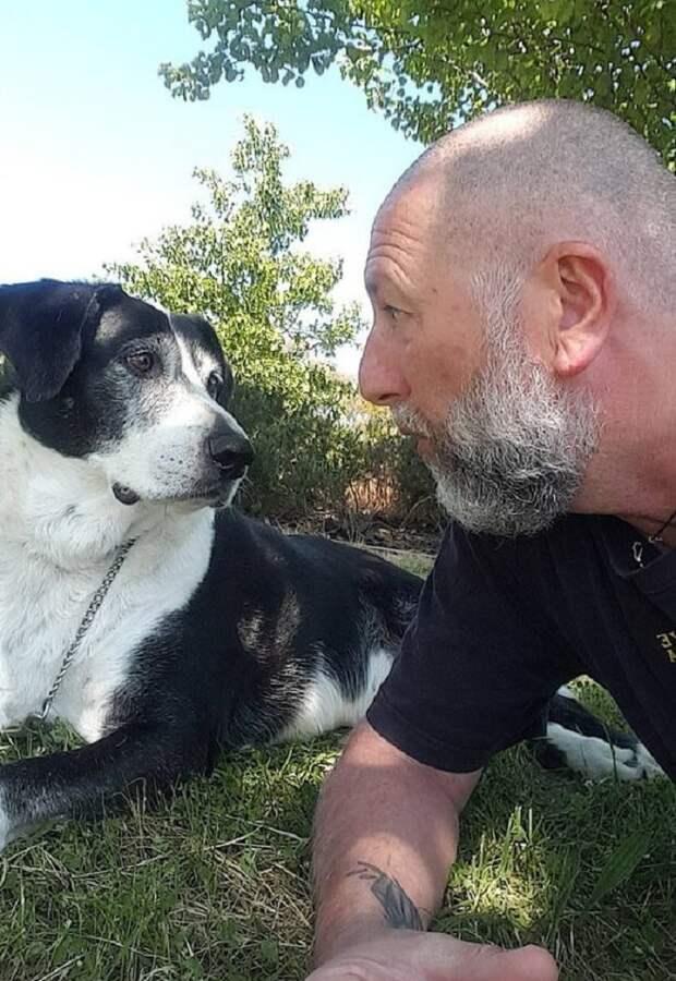 Мужчина и собака