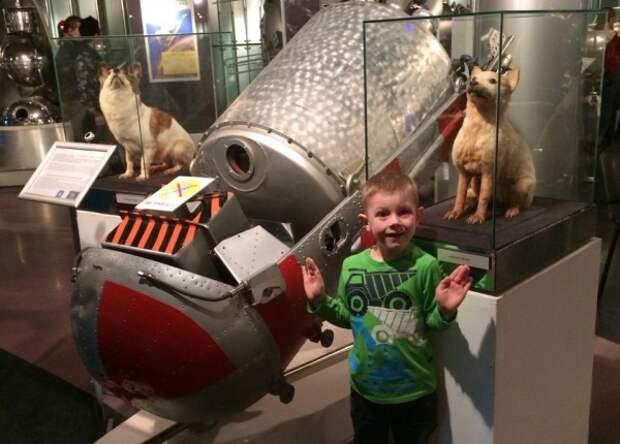 Белку и Стрелку нынче можно увидеть в Музее космонавтики
